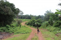 Sierra Leone, Kleinbauern